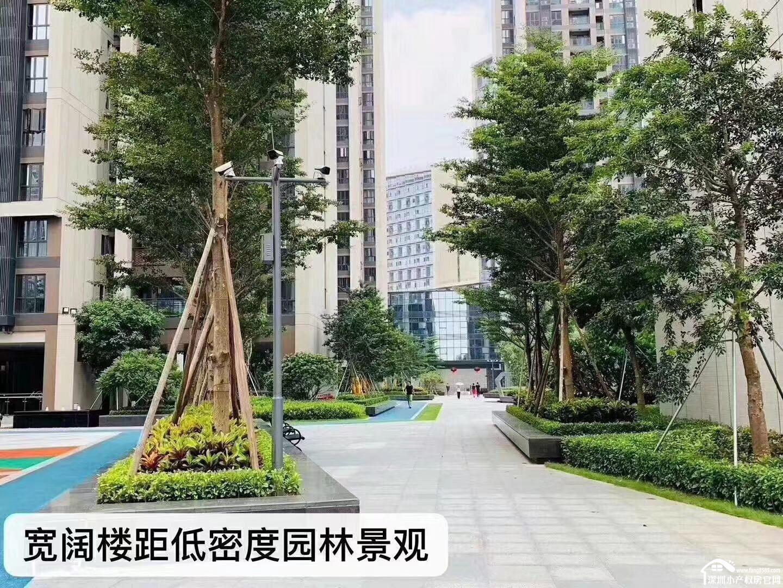 观澜集资房12栋新都国际超大花园房一比一停车位