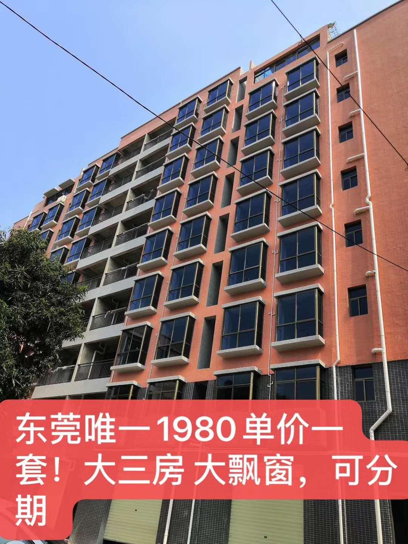 企石两栋特惠物业 【江景华府】1980元/平楼层任选