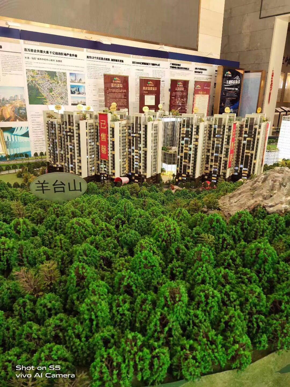 龙华商品房《恒大羊台新城》大浪地铁口 九栋大型花园小区