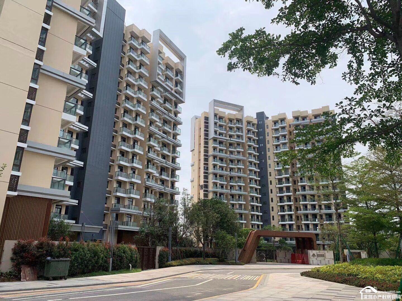 光明小产权房统建楼【南太公寓】8栋大社区