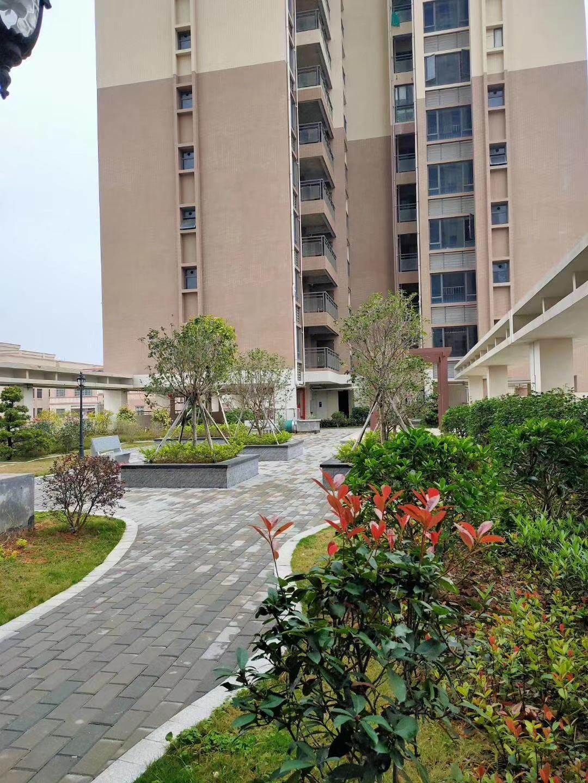 坑梓花园房【8090时代公寓】与深圳一桥之隔