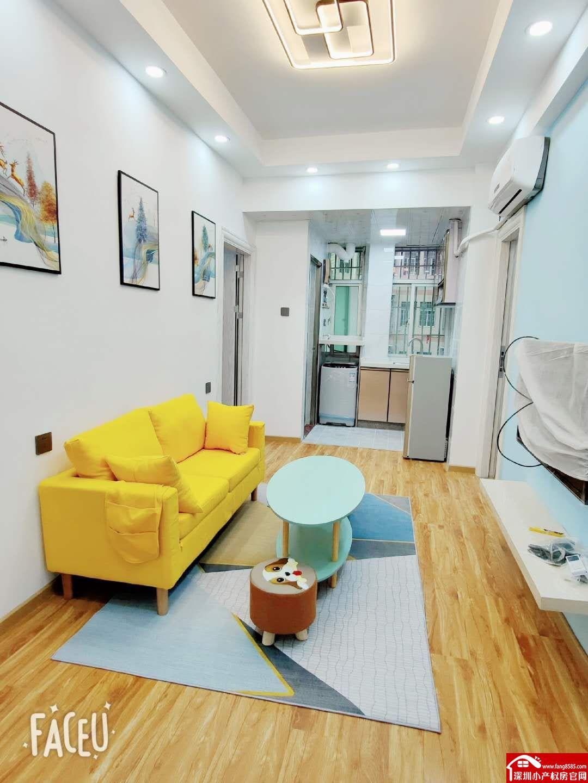 龙华小产权房统建楼【创新公寓】清湖地铁口300米