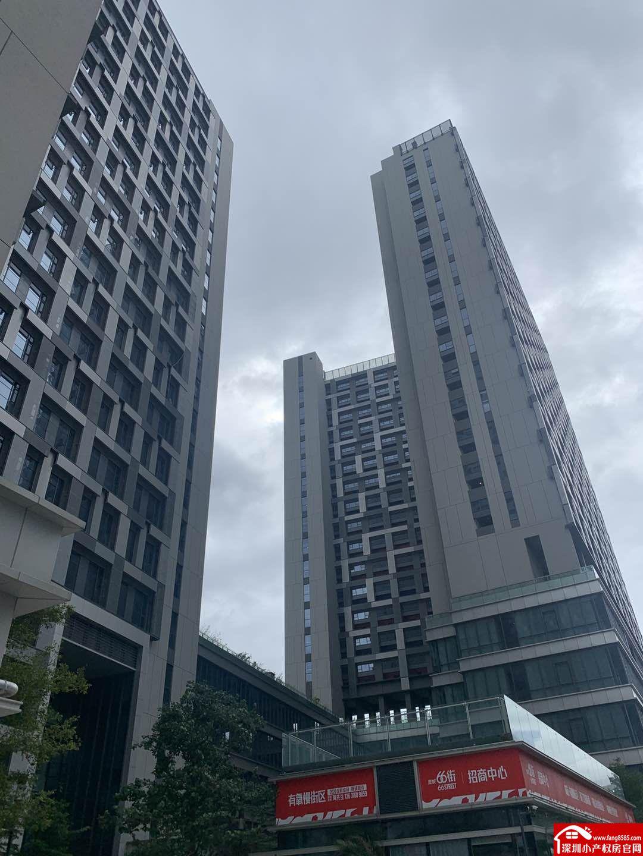公明五栋独立红本房【智荟天地】200万一套带停车场分10年
