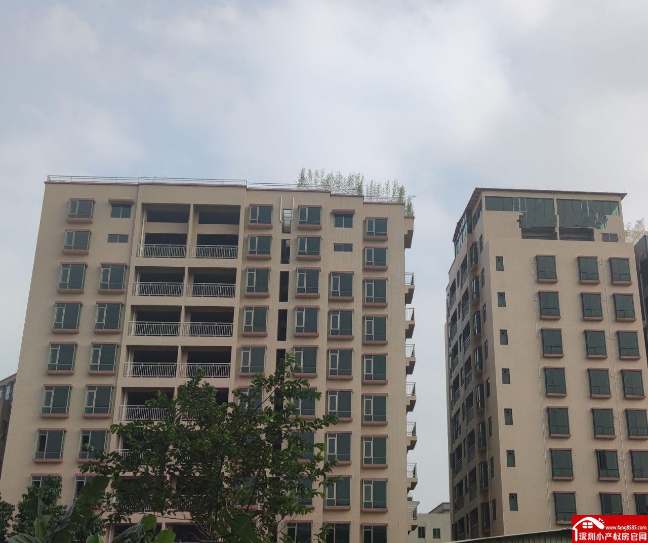 虎门小产权房统建楼【河畔花园】路东3栋封闭式小区