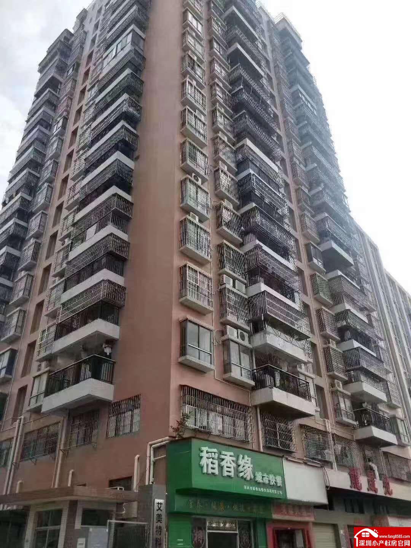 石岩罗租地铁口小产权电梯高层原始三房两厅出售
