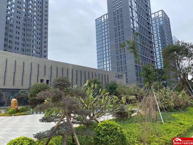 龙岗小产权房大村委统建楼7栋1500户《宝龙公馆》