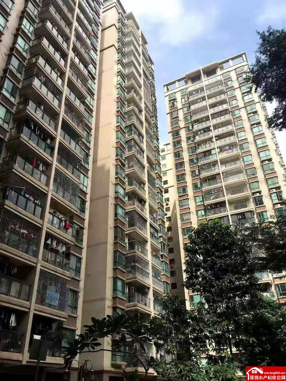 龙华清湖湾花园6栋大型封闭式花园房3房116平方180万