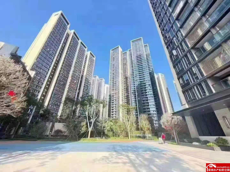 沙井独立红本商品房【智汇星辰】万科28栋大型花园小区