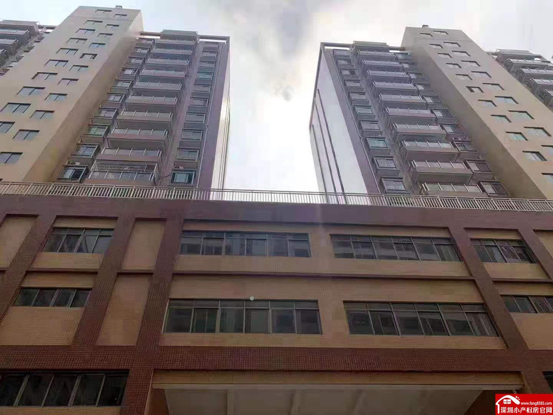 虎门小产权村委统建楼【国际新城】买房带车位