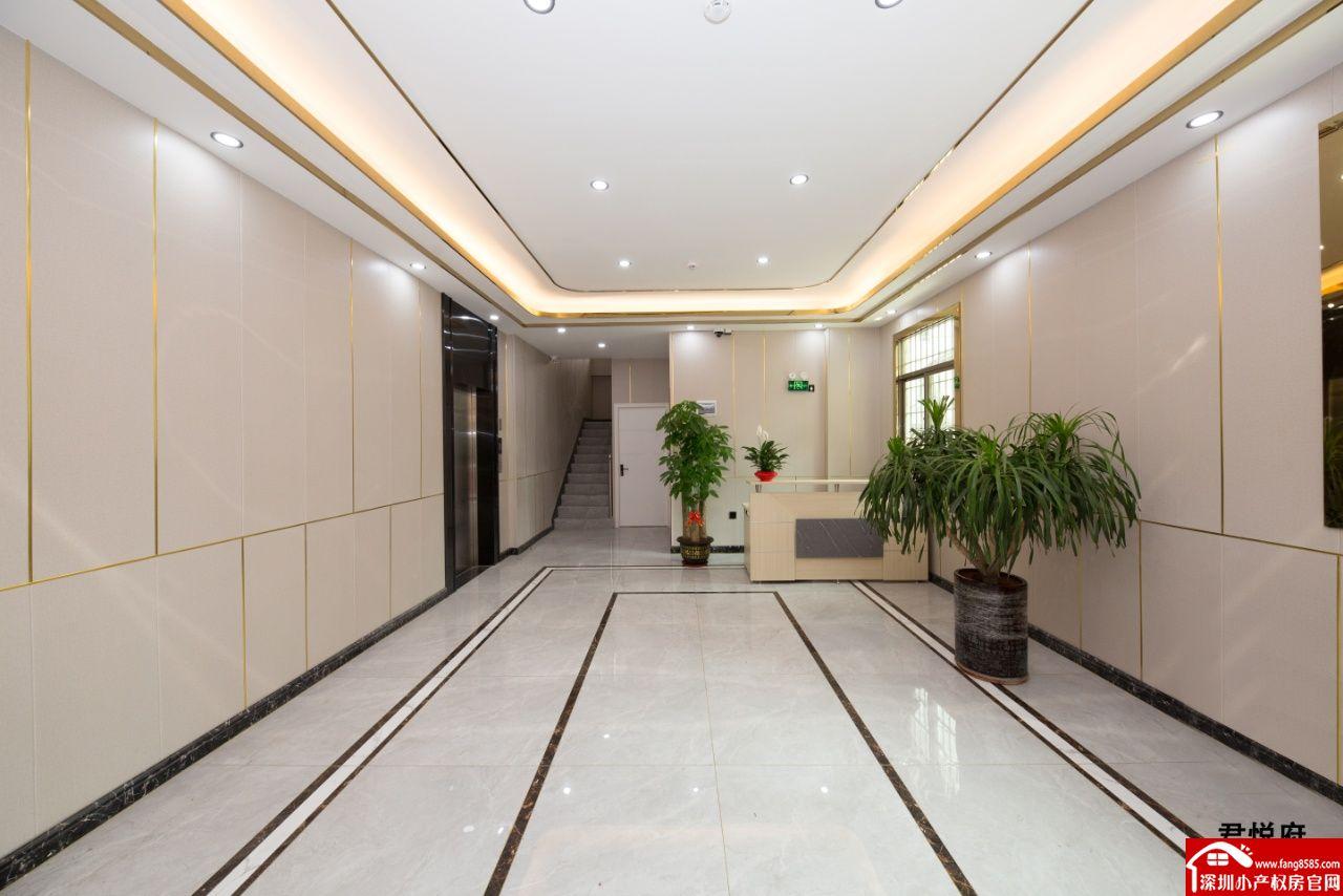 沙井小产权房统建楼【沙井君悦府】原始户型物业