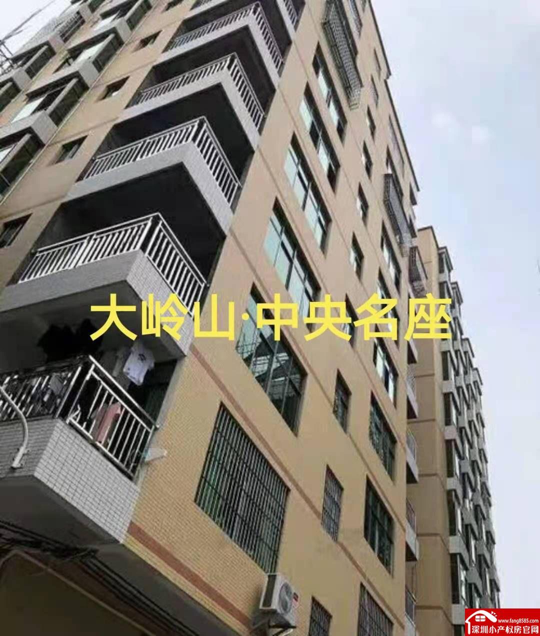 大岭山小产权房统建楼【中央名座】三栋大型社区
