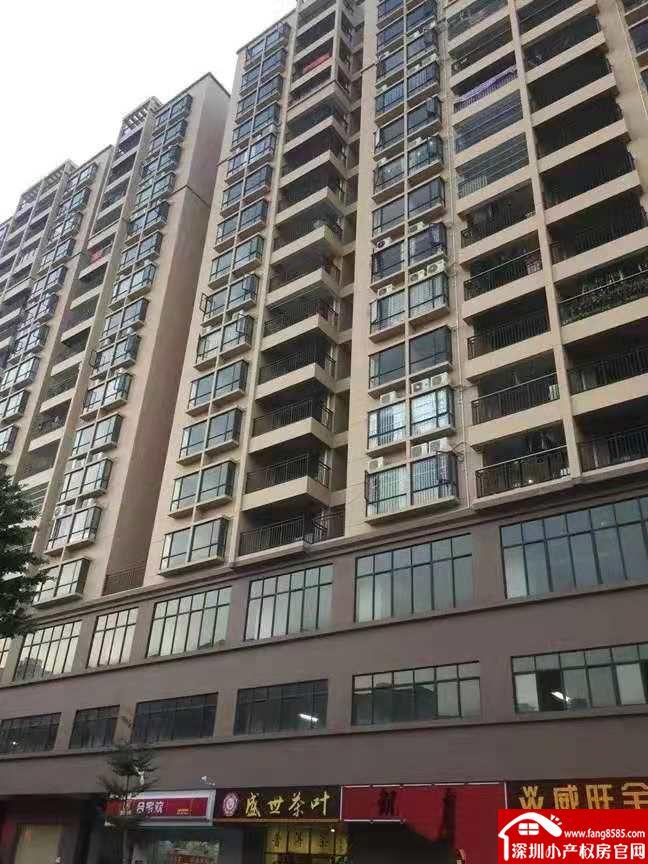 虎门唯一3大栋统建楼【凰城一号】封闭管理小区学区房