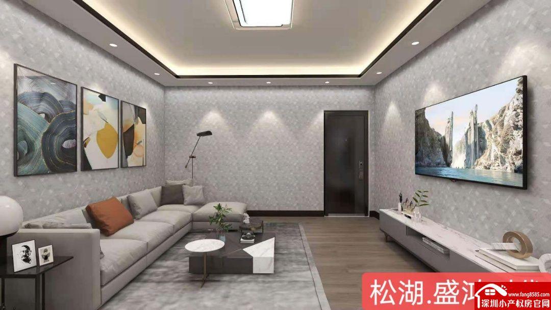 大岭山镇中心小产权房【盛鸿时代】4大栋物业