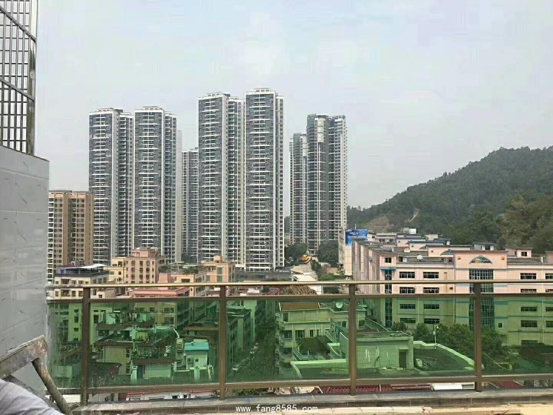 龙岗布吉中心小产权《恒大公馆》待拆迁项目火爆开售
