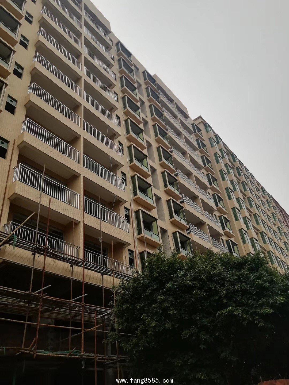 虎门小产权房《滨海壹号》,2栋200套全新房源