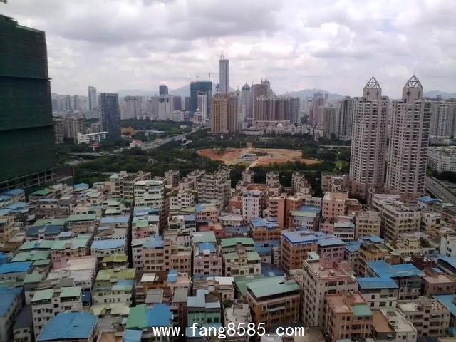 """""""钱只是个数字!""""深圳这个女房东,拥有40套房,却说自己很空虚"""