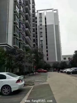 已售完大型村委统建楼【东江雅苑】