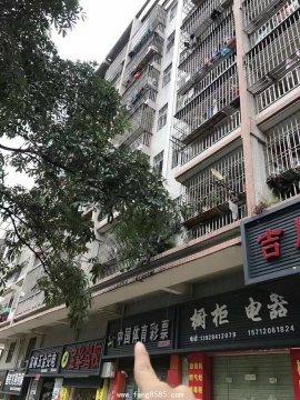 观澜新田地铁口零距离小产权《景田轩》火爆开售!