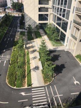 凤岗(雁田花园)5栋花园小区房,发绿本
