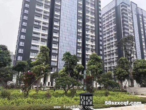 深圳大红本房【山水 • 悦城】小区自带双语幼儿园