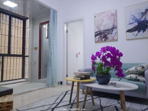 石岩《水田-公园里》精品单身公寓,贵族一房一厅