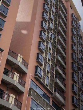塘厦小产权房统建楼(凤凰广场)三栋优质楼盘现房