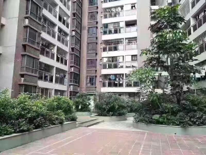 沙井轻轨西站旁村委房【会展公馆】带天然气管道 1:1停车位
